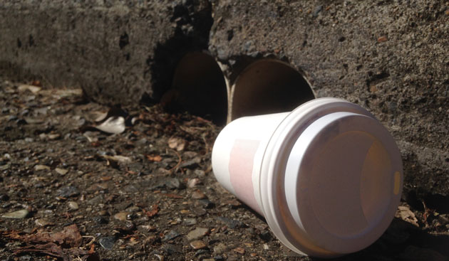 Disposable coffee cup plastic pollution